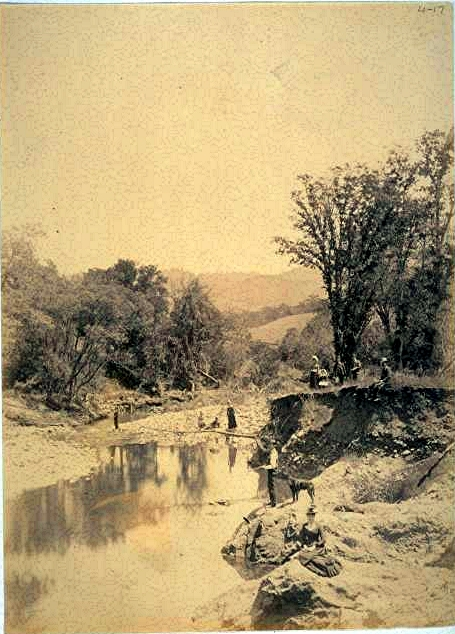 Scene on Sonoma Creek, Glen Ellen, California